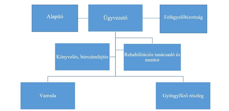 szervezeti-struktura